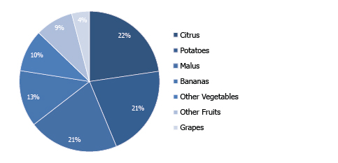 DISTRIBUTION OF AGRICULTURAL EXPORTS  BY PRODUCT (% Shares|2017)